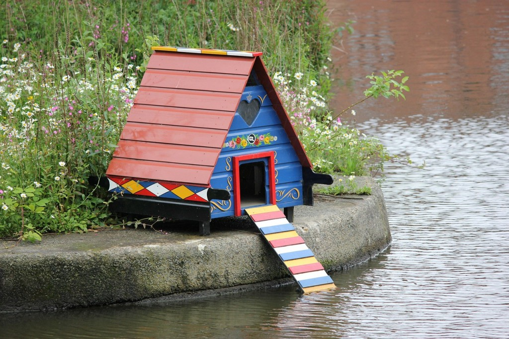 bird-house-71299_1280