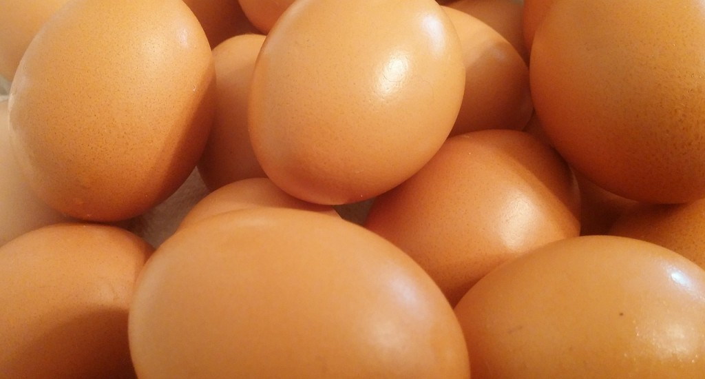 eggs-449191_1280
